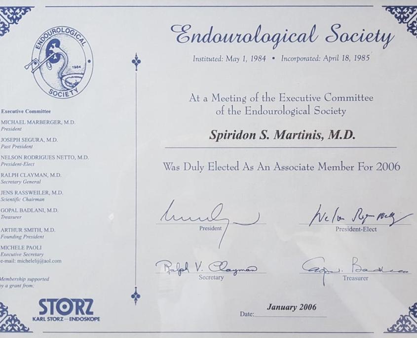 endourological society martinhs